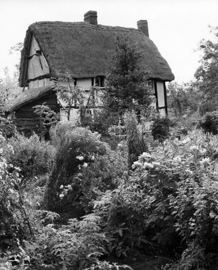Edwin Smith, Limetree Cottage, East Hagbourne,1953. (Chris Beetles Gallery)