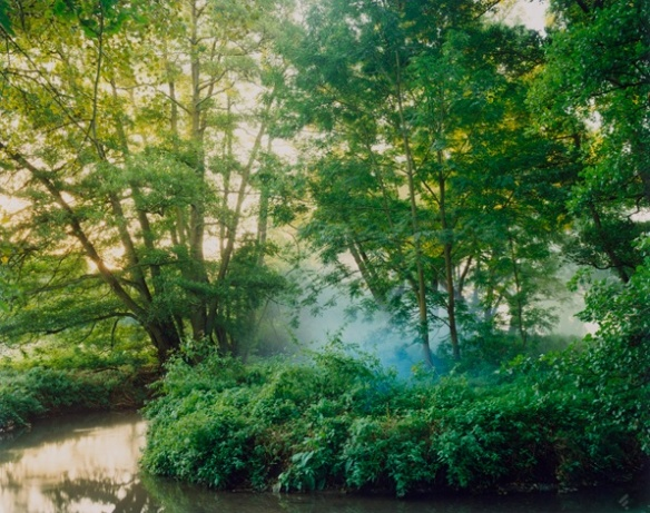 Harry Cory Wright. First Smoke Flare into Alder, 2012