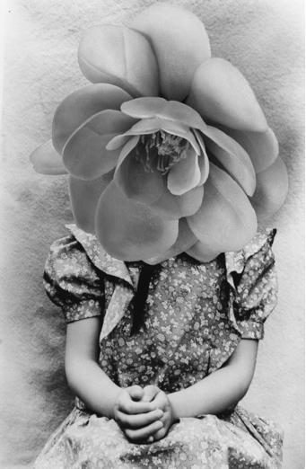 Mari Mahr, From Presents for Susana, 1985
