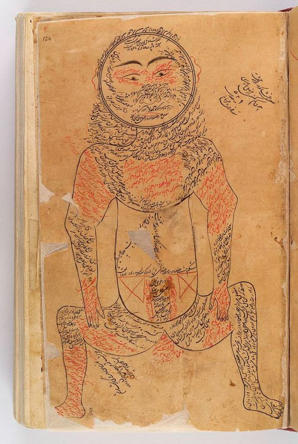 16th C copy of an illustration of Avicenna -11th C- of the muscular system
